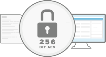 Secure Access Graphic